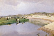 Reflection Paintings - Cows Grazing at Liver As North Jutland by Niels Pedersen Mols