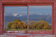 Window Frame Framed Prints - Cows Life Colorado Autumn Rocky Mountains Picture Window Art Framed Print by James Bo Insogna