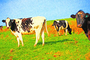 Pasture Digital Art Posters - Cows on a Hill 2 - Photoart Poster by Wingsdomain Art and Photography
