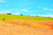 Grazing Cow Posters - Cows On A Hill . 40D3430 . Painterly Poster by Wingsdomain Art and Photography