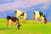 Pasture Digital Art Posters - Cows on a Hill . Photoart Poster by Wingsdomain Art and Photography