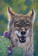 Print On Canvas Pastels Prints - Coyote cactus Print by Tracey Hunnewell
