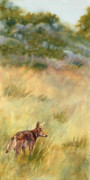 Plateau Painting Prints - Coyote Santa Rosa Plateau Print by Bonnie Rinier