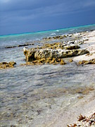 Tropical Photographs Photos - Cozumel Before Thunder by Danielle  Parent
