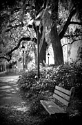 Forsyth Park Photos - Cozy Corner in Savannah by Carol Groenen