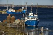 Fishing Industry Framed Prints - Crab Boats, Change Islands Framed Print by John Sylvester