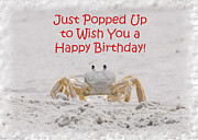 Fiddler Crab Framed Prints - Crab Happy Birthday Framed Print by Judy Hall-Folde