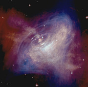 Crab Nebula Prints - Crab Nebula Print by Purestock