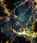 Neutron Star Posters - Crab Nebula Poster by Space Telescope Science Institute / NASA