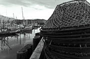 Crab Traps Photos - Crab Traps by Darcy Michaelchuk