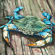 Seafood Posters - Crabby Blue Poster by Dianne Parks