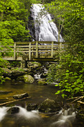 Park Scene Posters - Crabtree Falls and Bridge Poster by Andrew Soundarajan