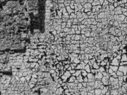 Abstractions - Cracked and Peeling Paint on Brick Wall by Robert Ullmann