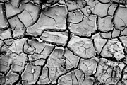 Drought Posters - Cracked Dry Earth Poster by Christoph Hetzmannseder