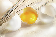Recipe Posters - Cracked egg with yolk Poster by Sandra Cunningham