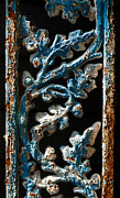 Ocularperceptions Metal Prints - Crackled Coats Metal Print by Christopher Holmes