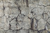 Parapet Prints - Cracks In Concrete Print by Dirk Wiersma