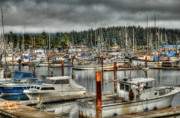 Boats Docked Prints - Crafty Quiescence Print by Rich Beer