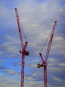 2 Acrylic Prints - Crane Couple by Roberto Alamino