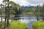 Mitkof Prints - Crane Lake, Tongass National Forest Print by Konrad Wothe