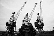 Cranes Photo Prints - Cranes At Leith Docks Edinburgh Scotland Print by Joe Fox