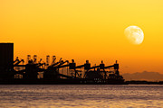 Moon Detail Posters - Cranes at Sunset Poster by Carlos Caetano