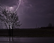 Lightning Digital Art - Crazy Lightning behind a tree by Joe Gee