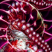 Creatures Of The Deep - Octopus Caught In The Swirl Of The Giant Nautilus - Electric - Square - Red Print by Wingsdomain Art and Photography