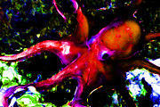 Octopus Prints - Creatures of The Deep - The Octopus - v3 - Electric - Orange Print by Wingsdomain Art and Photography