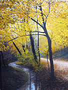 David Bottini - Creek Side Autumn Foliage