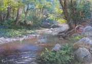 Bill Puglisi - Creek Study