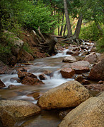 Water Photographs Prints - Creek Print by Tim Reaves