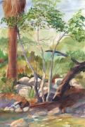 Tree. Sycamore Paintings - Creekside Sycamores by John Ressler