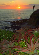 Heisler Park Framed Prints - Crescent Bay Point Framed Print by Linda Marshutz
