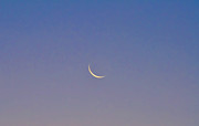 Crescent Moon Digital Art Prints - Crescent Moon Print by Bill Cannon