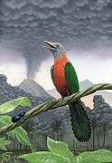 Doomed Prints - Cretaceous Bird, Artwork Print by Richard Bizley
