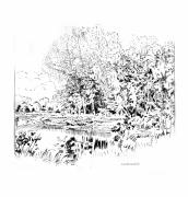 Lake Drawings Framed Prints - Creve Coeur Lake Framed Print by John Lautermilch