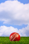Cricket Prints - Cricket ball on grass Print by Richard Thomas