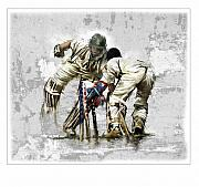 Ashes Prints - Cricket1 Print by James Robinson