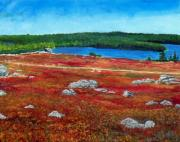 Blueberry Paintings - Crimson Blueberry Barren by William Tremble