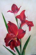 Gladiola Paintings - Crimson Gladiola by Mary Emily Correia
