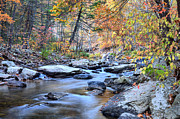 Colors Of Autumn Prints - Crisp Autumn Air Print by JC Findley