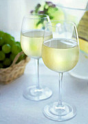Wine Illustrations Digital Art Prints - Crisp Whites Print by Elaine Plesser