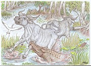 Attacking Drawings - Crocodile Attack by Desley Brkic