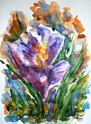 Crocus Flowers Framed Prints - Crocus  Framed Print by Zaira Dzhaubaeva