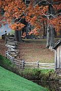Split Rail Fence Originals - Crooked fence by Living Waters Photography