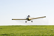 Cindy Prints - Crop Duster Print by Cindy Singleton