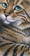 Cat Artwork Framed Prints - Cropped Cat 6 Framed Print by Carol Wilson