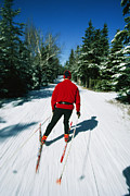 Jogging Posters - Cross-country Skiing, Lake Placid, New Poster by Skip Brown