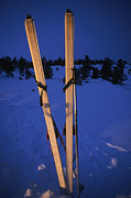 Winter Sports Framed Prints - Cross-country Skis Standing Upright Framed Print by Phil Schermeister